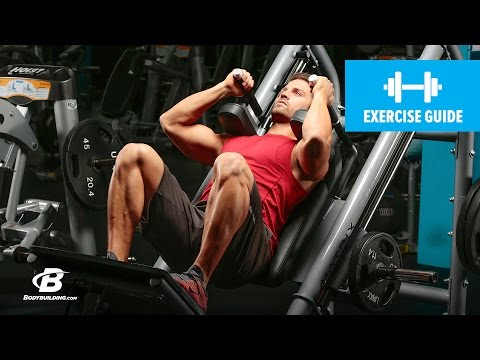 Hack Squat   Exercise Guide