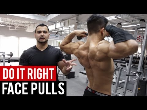 """How to: Do FACE PULLS for super sexy SHOULDERS """"Rear Delt's"""" ! (Hindi / Punjabi)"""