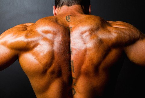 The 10 Best Trap Exercises For Massive Trapezius Muscles